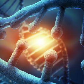 Healing with Alpha Lipid Lifeline Health supplement
